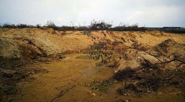 石亭江滩涂坑洞积存污水总磷超标。资料来源:中央环保督察组