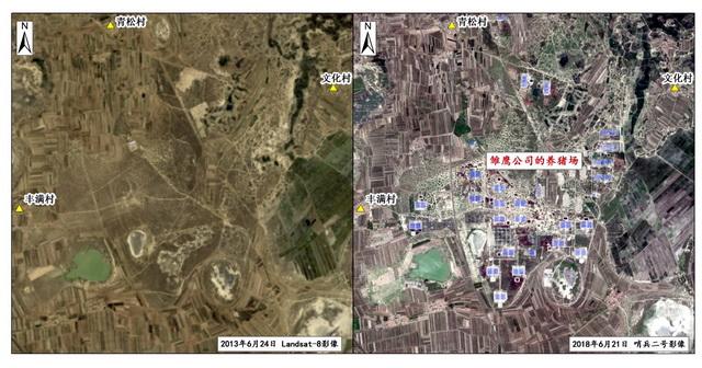 吉林雏鹰公司征用草地区域对比(左图2013年6月,右图2018年6月)。资料来源:中央环保督察组