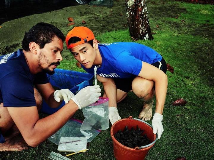 公益纪录片《海龟奇援》以拯救海龟为主题,呈现人与动物的奇妙缘分