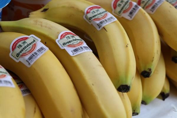 5月9日在柬埔寨金边举行的柬埔寨香蕉出口中国首发仪式上拍摄的香蕉。新华社