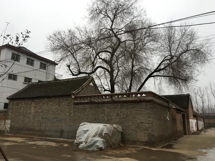 1958年10月9日,许家印在太康县高贤乡聚台岗村的这座老宅出生,直到后来考入武汉钢铁学院(现武汉科技大学),才离开家乡。   摄影/马纪朝