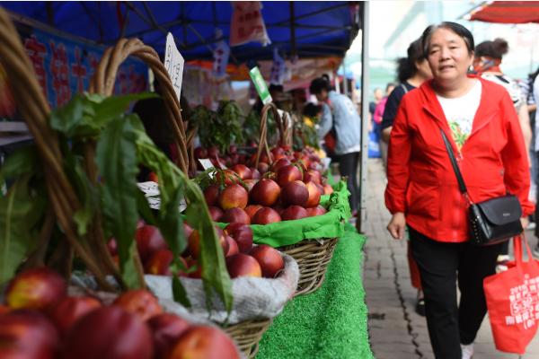6月11日,市民在长春市南关区一家农贸市场选购水果。新华社
