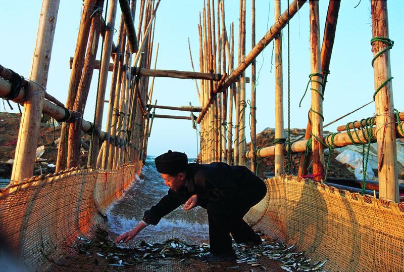 湖南洞庭湖,渔民行使传统手段踩溜打渔。 © 韦宝玉/WWF