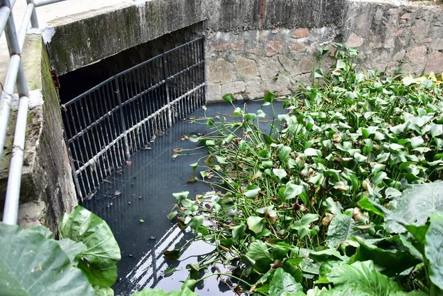 2018城市黑臭水体整治专项巡查第一巡查组在大陵河流域三华中新五街一桥头下发现积存的大量黑臭水。摄影/章轲