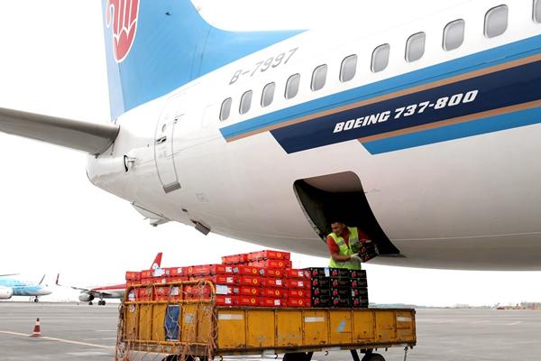 6月12日,工作人员在乌鲁木齐地窝堡国际机场卸运从吉尔吉斯斯坦进口的樱桃。新华社图