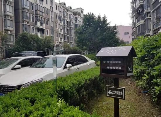 世华佳苑小区的院落里,为饲养宠物的居民设置了方便措施。
