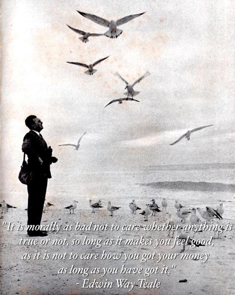 艾温·威·蒂尔(Edwin Way Teale,1899~1980),美国著名博物学家、摄影家、自然文学作家。生于伊利诺伊州,曾任纽约昆虫协会、布鲁克林昆虫协会主席,梭罗协会主席,美国皇家摄影协会会员。他配有自己拍摄的照片的自然图书,以准确的科学信息和诗意的表达方式著称,荣获包括普利策奖和约翰·伯勒斯勋章在内的多个奖项。