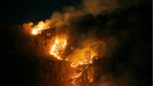 据巴西航天局公布的最新数据,自1月份以来,巴西发生森林火灾和焚林造田的次数比去年同期增加了78%。