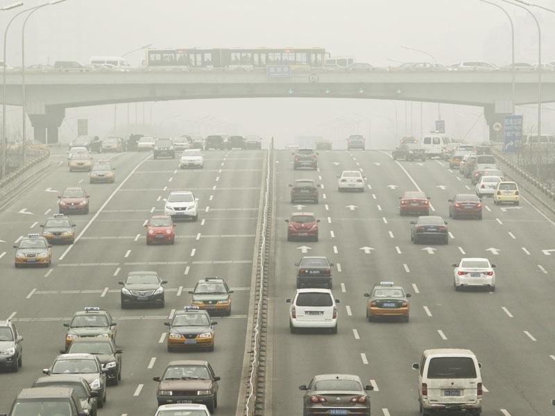 让自行车回归城市,绿色交通也可以创造更高经济效益