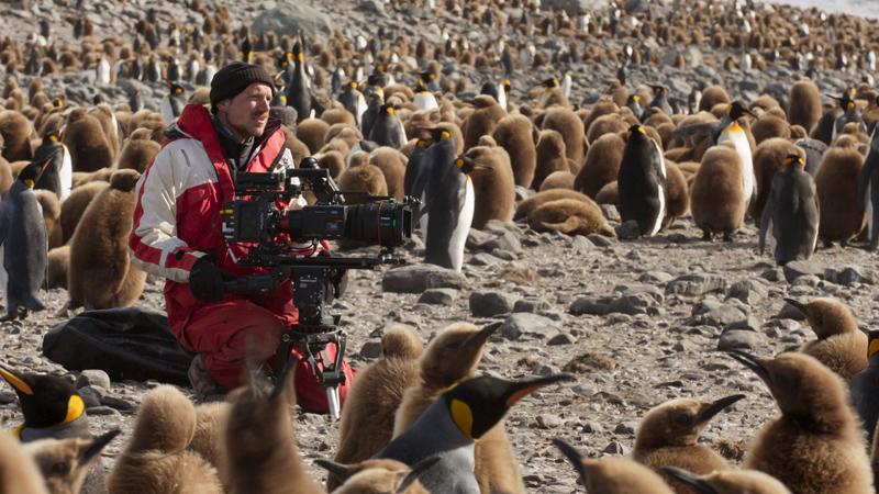 《七个世界,一个星球》拍摄历时2年,4支团队前去七大洲,足迹遮盖40个国家,最后积累了2000个幼时素材,经过1年后期编辑制作,凝结成7个幼时的成片