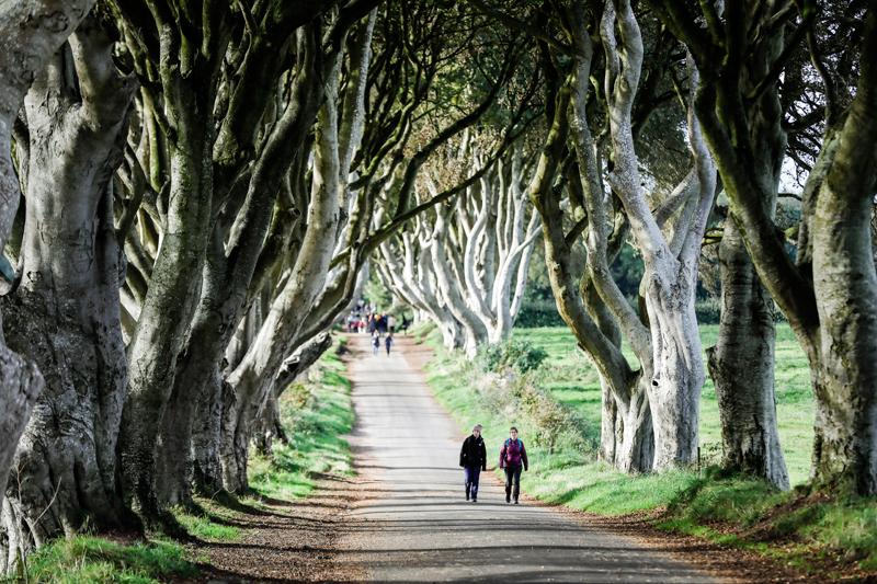 """2009年,HBO巨制《权力的游戏》在北爱尔兰拍摄,""""国王大道""""等著名景点被纳入拍摄地。  摄影记者/任玉明"""