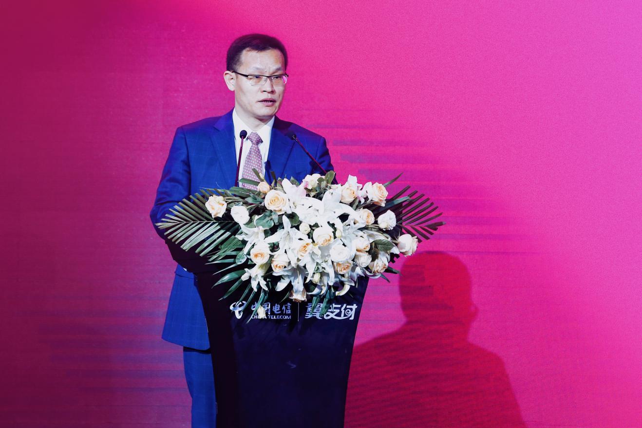 天翼电子商务有限公司总经理罗来峰大会致辞