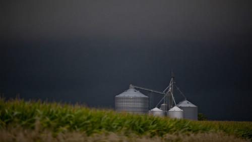 近一年,超过40%的农场破产案发生在中西部13个州的农业主产区