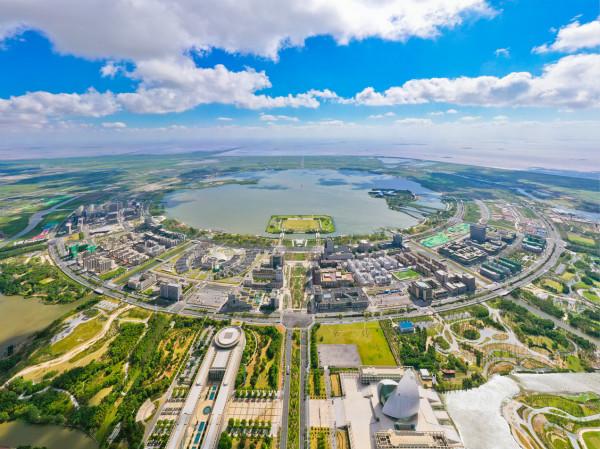确保重点产业集聚,临港新片区实行新增用地项目正面清单