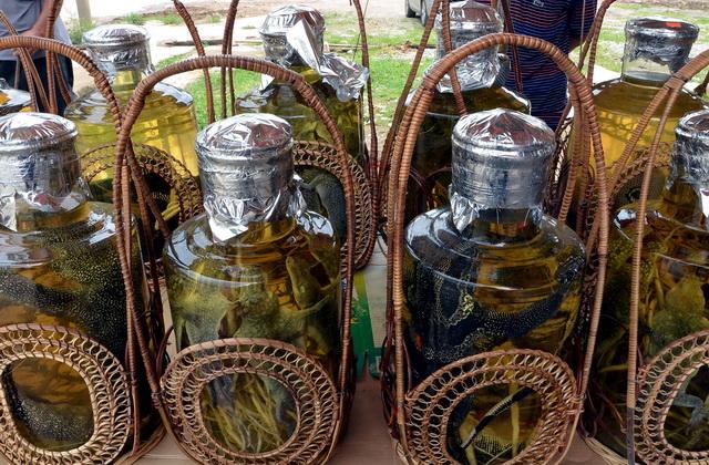 广西中越边境靖西县龙邦口岸小商品一条街销售的越南产野生动物药酒。摄影/章轲