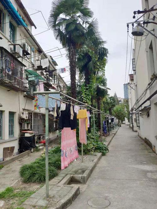 曹杨一村的栋距约等于一栋房子的高度