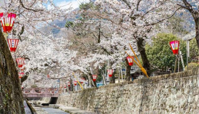 扩口罩产能、纾困中小企业,日本出台第一轮疫情紧急对策方案