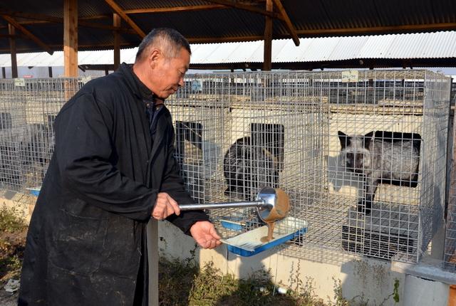 山东某地的一家野生动物养殖场。摄影/章轲