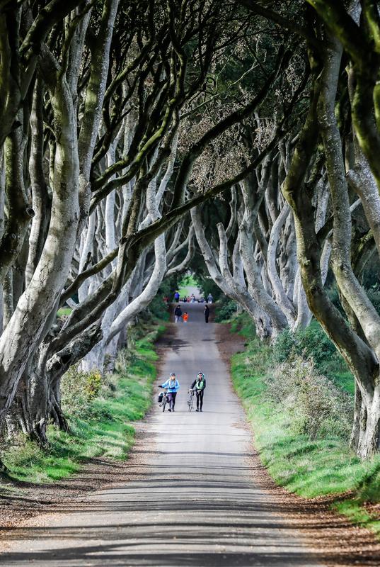 《权力的游戏》拍摄地之一,北爱尔兰国王大道   摄影记者/任玉明