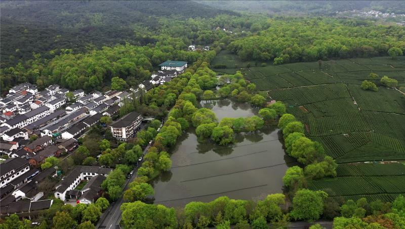 茅家埠是西湖南线的幽静村落,地理位置优越,村民的收入主要来自经营茶园、茶楼和农家乐。