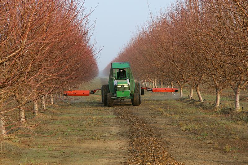 加利福尼亚的一家农场,四周一片寂静
