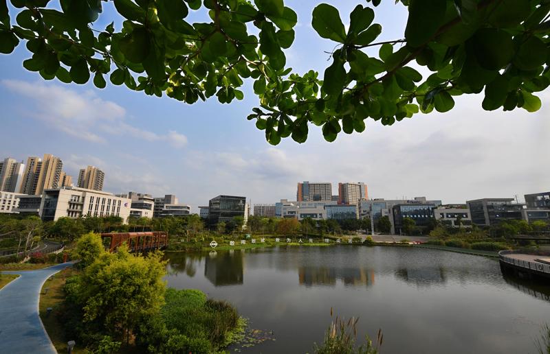 海南生态软件园位于海南省澄迈县,是承接海南自贸港政策落地的重点园区之一。   新华社图