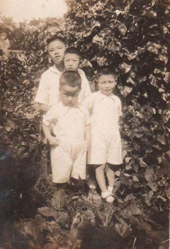 抗战时期的许氏四兄弟