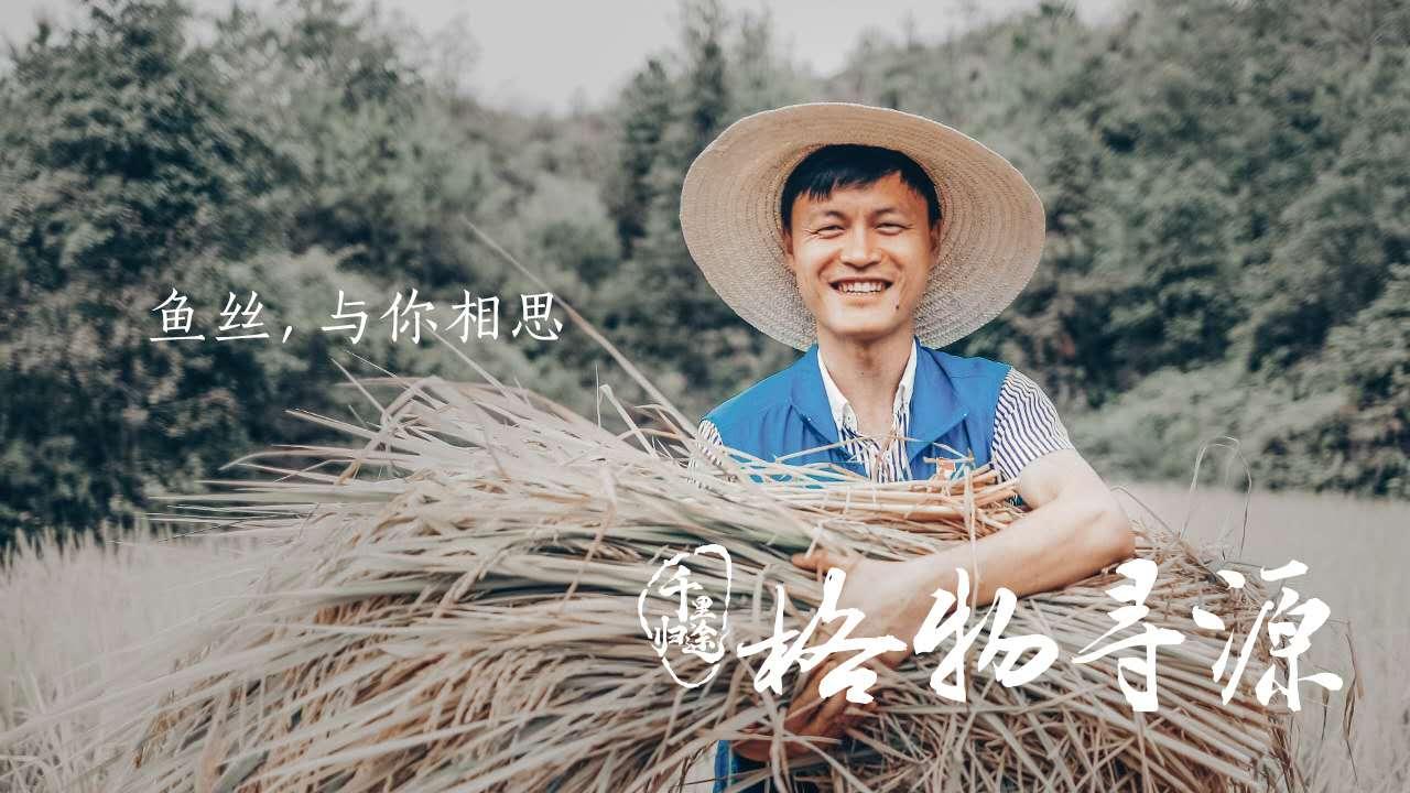方军在和平村帮着村民收割稻谷 摄影/任玉明