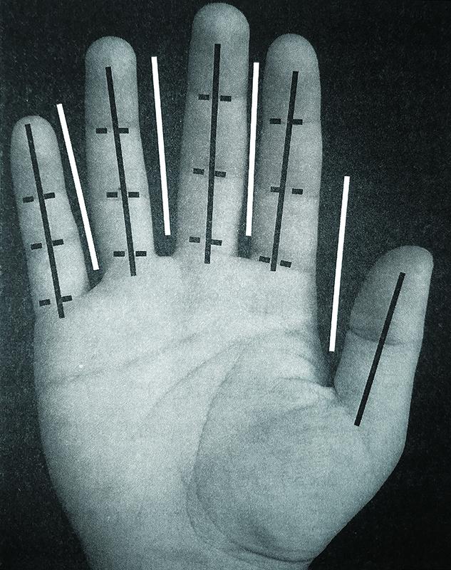 世界上的大部分数字系统都是以人类手指的数目为基础的。然而,人类手部的其他一些特征也可能会影响数字系统的选择。图中白线显示的是手指之间的4个空隙,而黑色虚线显示的是12个指关节,这些手部特征也可以对数字系统起到塑造作用.