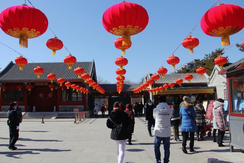 春节假期,游客在北京陶然亭公园游玩   视觉中国图