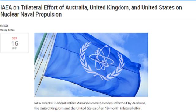 来源:国际原子能机构网站