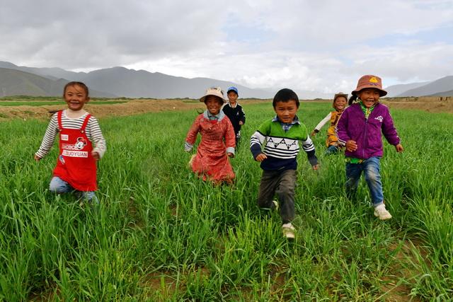 草原生态保护补助奖励机制是目前中国最重要的草原生态补偿机制。图为西藏拉孜县孩子们在草地上玩耍。摄影/章轲