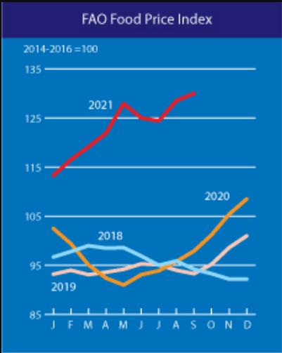 联合国粮农组织食品价格指数创十年新高(来源:FAO)