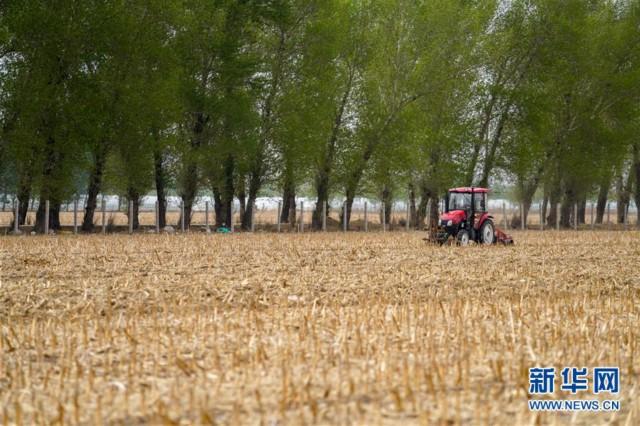 (新华全媒头条·图文互动)(9)为现代农业探新路——来自吉林梨树的田野报告