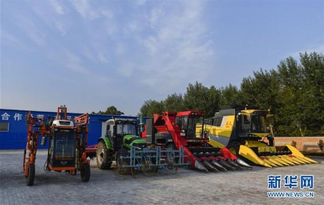 (新华全媒头条·图文互动)(5)为现代农业探新路——来自吉林梨树的田野报告